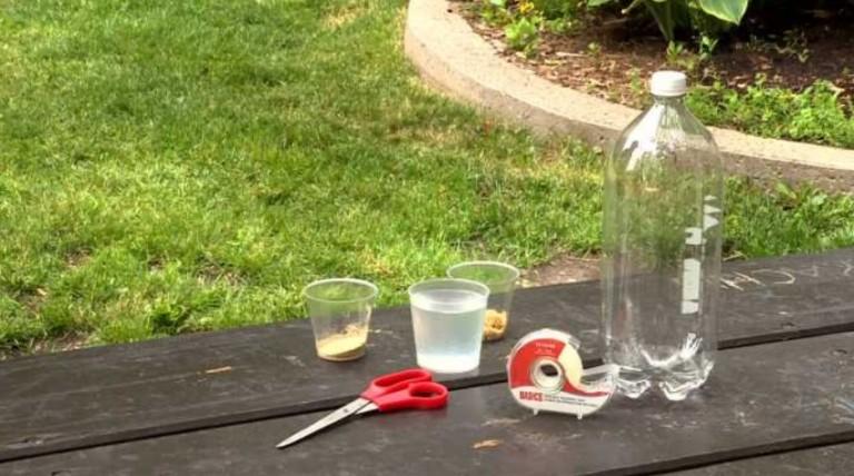 astuce anti moustiques