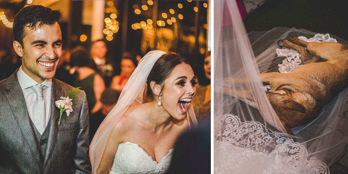 Un chien errant s'introduit à leur mariage. Leur réaction fait le buzz
