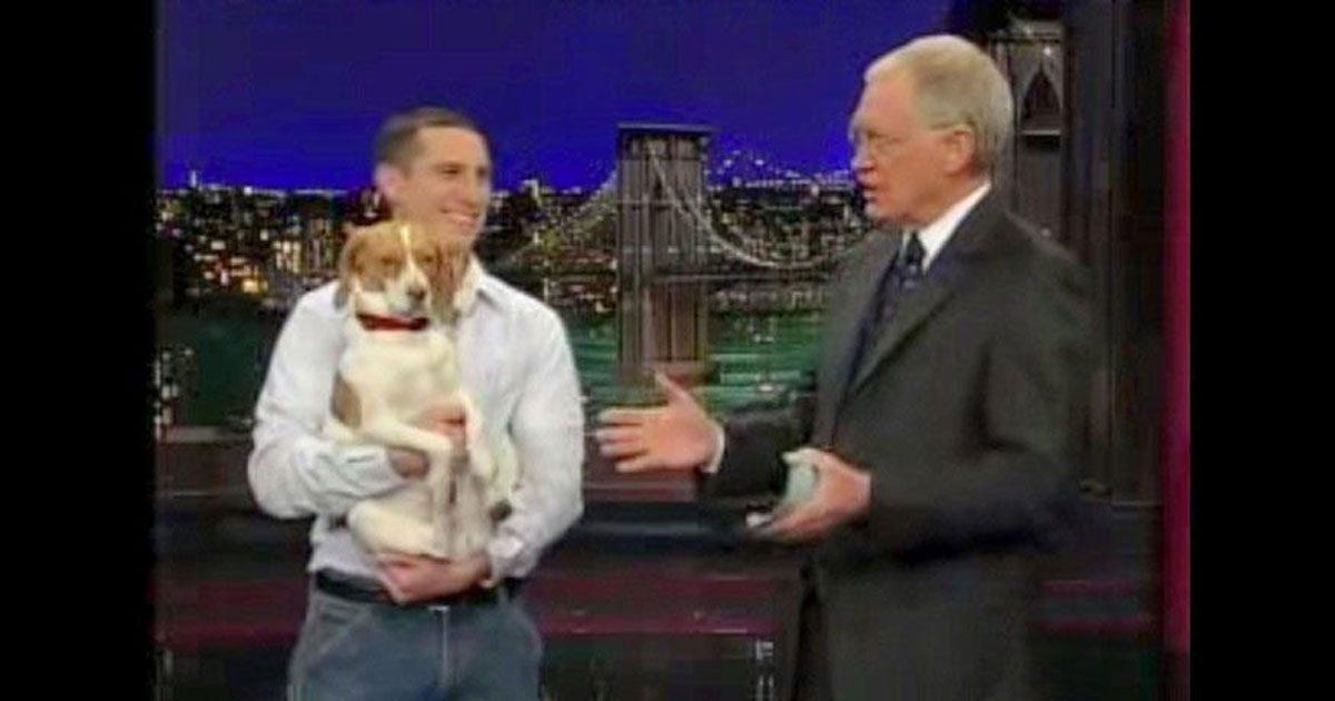 Un homme dit à son chien de faire le mort à la télévision. Le chien le fait d'une manière très drôle.