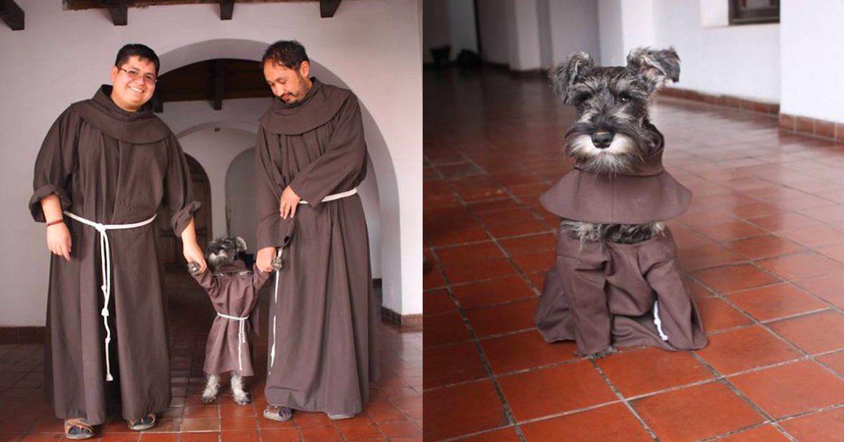 Un monastère adopte un chien errant qui devient « Frère Moustache » (7 photos)